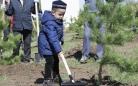 400 деревьев посадили в парке им. 10-летия Независимости Казахстана