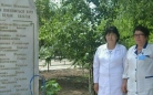 В Карагандинской области хирург поселковой больницы собственными силами установил обелиск в память об умерших коллегах