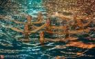 В Караганде официально начался новый спортивный год