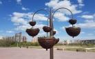 В Караганде начались работы по вертикальному озеленению
