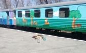 В Караганде готовят к запуску детскую железную дорогу