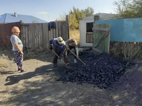 Бездомным животным помогают осужденные Карагандинской области