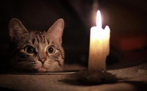 В некоторых районах Караганды 5 декабря отключат свет