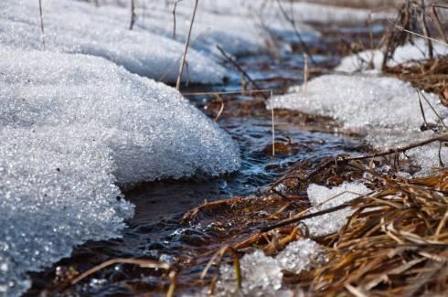 В двух областях Казахстана ожидается подъем уровня воды в реках