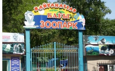 Карагандинка создала петицию «Спасите наш зоопарк!»