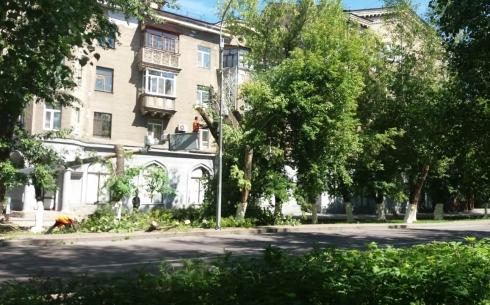 На одной из карагандинских улиц спиливают деревья