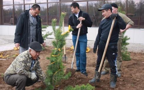 В Карагандинской области РУ «Казмарганец» сажает деревья