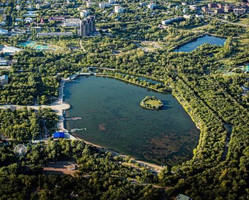 «Полёты над болотом». Карагандинцы возмущены состоянием озера в Центральном парке
