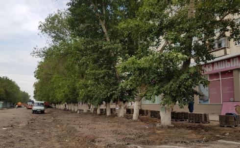 В Караганде на проспекте Строителей вырубят еще 23 дерева