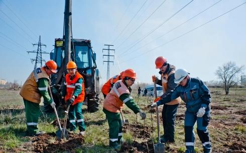 Уже около четырех тысяч деревьев высадили сотрудники компании «АрселорМиттал Темиртау» с начала 2019 года