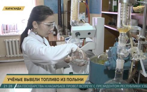 Карагандинские учёные вывели топливо из полыни