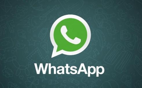 День рождение социального проекта «Поиск работы посредством «WhatsApp»
