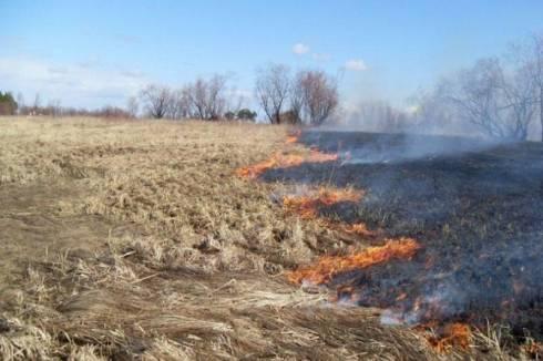 В Карагандинской области произошли два случая возгорания сухостоя