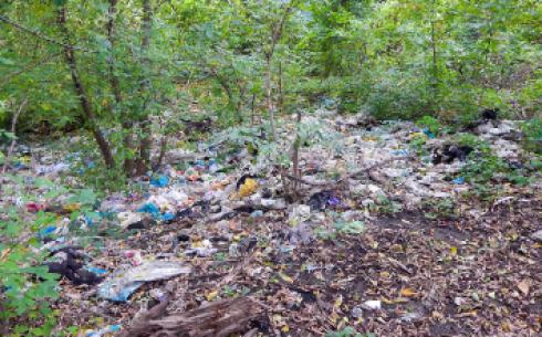 Усеянная мусором территория ЖД вокзала возмущает карагандинцев