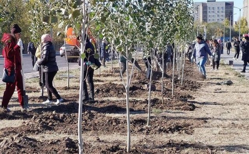 В Караганде стартовала осенняя посадка деревьев