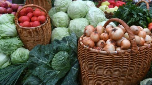 Свыше полутора тысяч тонн продукции привезут фермеры на ярмарку в Караганду