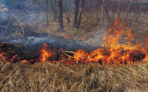 В Карагандинской области начался пожароопасный период