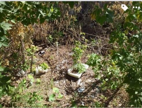 Забытые места в Темиртау или что делать, когда коммунальные службы игнорируют жалобы жителей