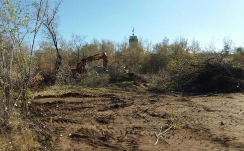 В Караганде реконструкция парка потребовала вырубки новых деревьев