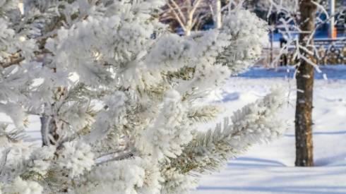 Очередная волна холода ожидается на следующей неделе в Казахстане
