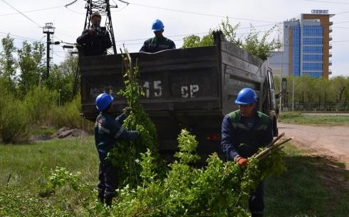 В Караганде проводится обрезка веток деревьев, растущих вдоль высоковольтных линий