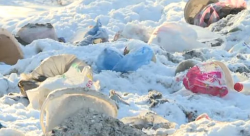 Трупы животных, вонь и крысы: карагандинцы 25 лет живут рядом со свалкой (видео)