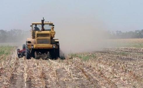Карагандинским предпринимателям будут выдавать сельхозземли через конкурс