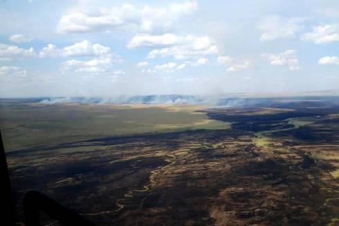 Более 280 человек тушат лесной пожар в Карагандинской области