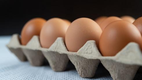 Яйцам предсказали рост до 700 тенге за десяток
