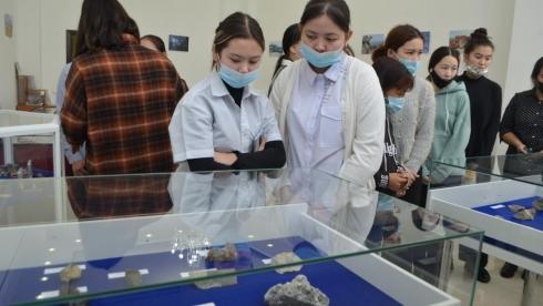 В Темиртау открылась выставка драгоценных камней и минералов