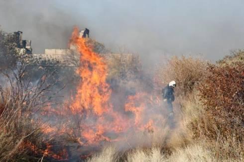 45 дачных участков сгорели в Караганде