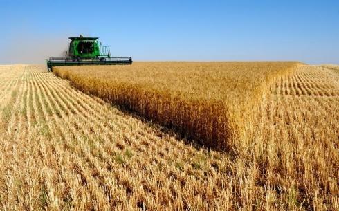 Женис Касымбек поручил контролировать ситуацию с ценами на хлеб