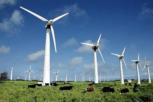 Ветрогенераторы установят для получения электроэнергии в Карагандинской области
