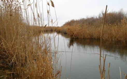 Плотину на реке Топар в Карагандинской области отремонтируют в следующем году