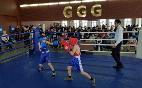 В Караганде прошёл турнир по боксу