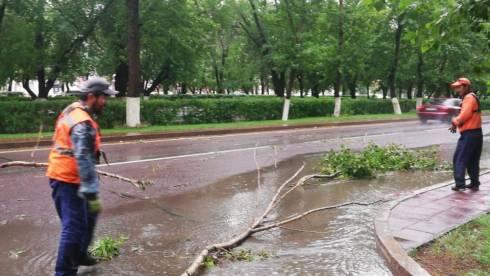 В Караганде устраняют последствия шквального ветра