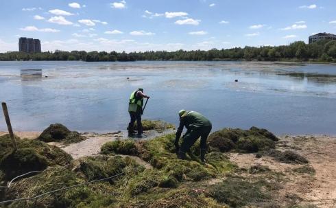 Проблема паркового озера находится на контроле акима Караганды