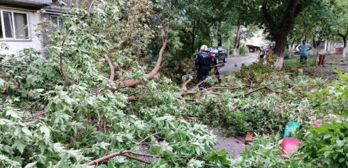 Спасатели ДЧС рассказали о ликвидации последствий урагана в Караганде