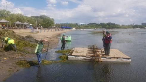 Из озера в Центральном парке Караганды вытащили 8 КАМАЗов водорослей