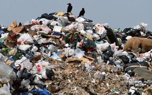 31% карагандинцев считает, что нужно штрафовать горожан за выброшенный в неположенном месте мусор