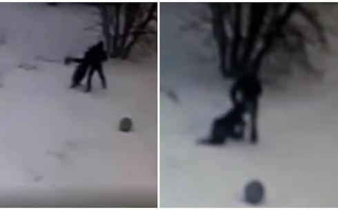 Нападение на девушку возле акимата Темиртау попало на видео
