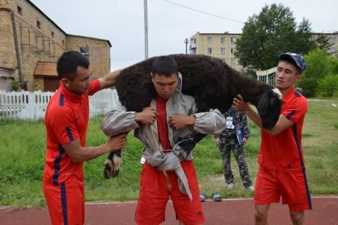 Полицейский поднял барана 75 раз в Карагандинской области