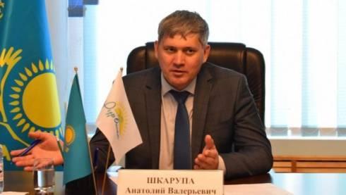 Анатолий Шкарупа назначен вице-министром энергетики РК