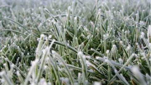 Заморозки ожидаются в Карагандинской области