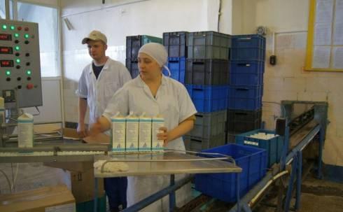 В молочной отрасли стимулируют закуп местного сырья