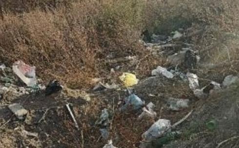 Без слёз не взглянешь. Жители Михайловки бьют тревогу из-за мусора