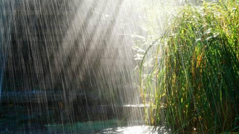 Сильные дожди придут в Казахстан