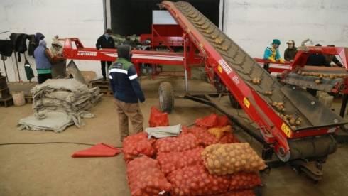 В Карагандинской области завершается уборка урожая