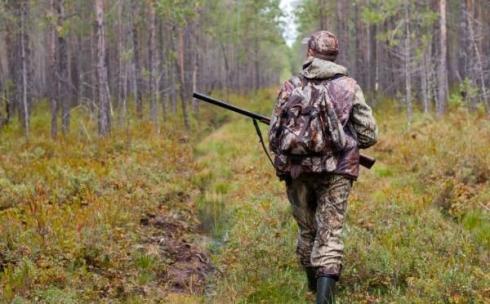 Сезон весенней охоты: о чем важно помнить и где можно охотиться